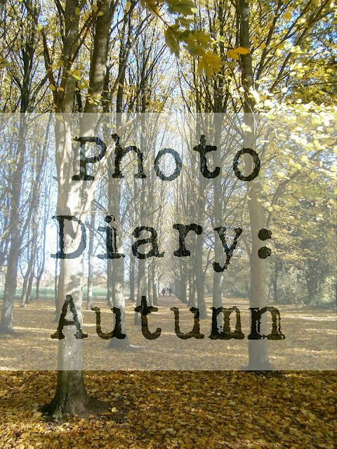 Autumn photo diary photography blogger thriftyvintagefashion