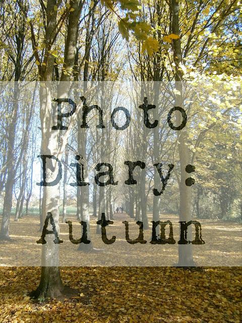 Autumn photo diary photography blogger thriftyvintagefashion