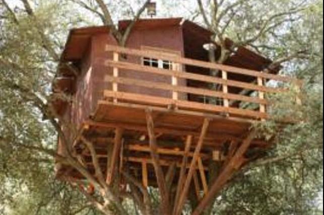 Come costruire una casa sull 39 albero il fai da te for Case in legno sugli alberi