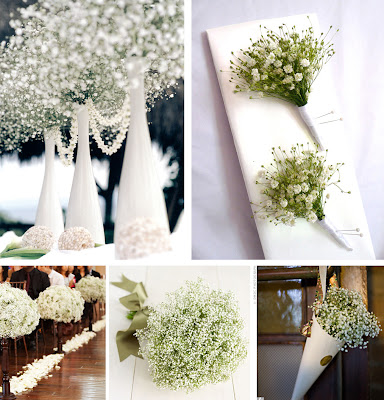 Baby Breath Wedding Flower