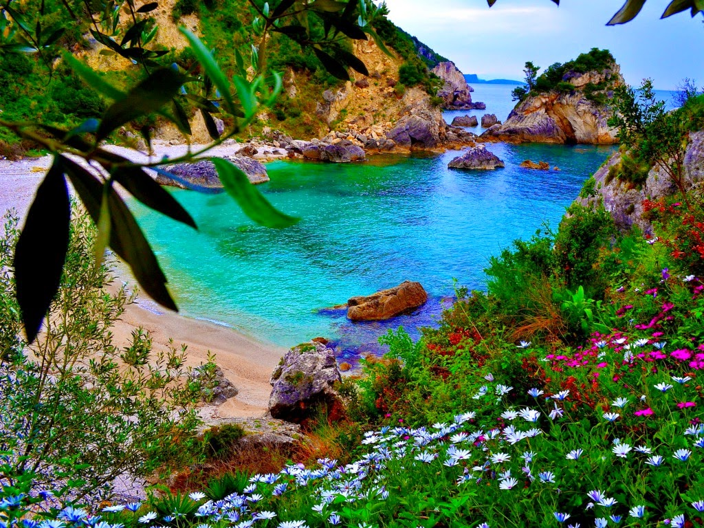 Amazing nature wallpapers beautiful nature hd live for Beautiful beaches in la