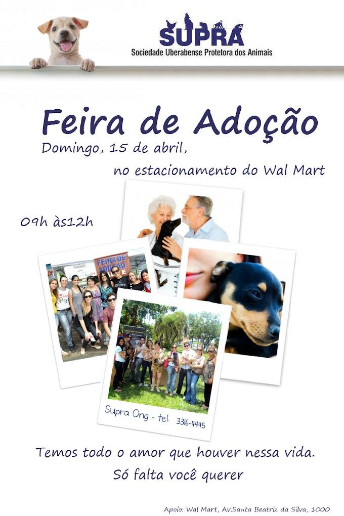 Feira de adoção da Supra - Domingo, 15 de Abril