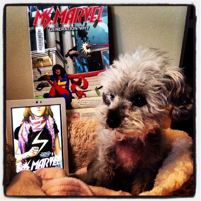 A fuzzy grey poodle, Murchie, sits in a small dog bed with fuzzy beige lining. Beside him sits a white Kobo with Ms Marvel Volume One's cover on its screen. It depicts a brown girl from the nose down, one fist clutch before her chest. She wears a pink scarf and a black t-shirt with a lightning bolt on it. Atop the dog bed is a trade paperback copy of Volume Two, featuring the same girl punching a robber as she checks her phone.