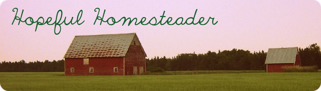 Hopeful Homesteader