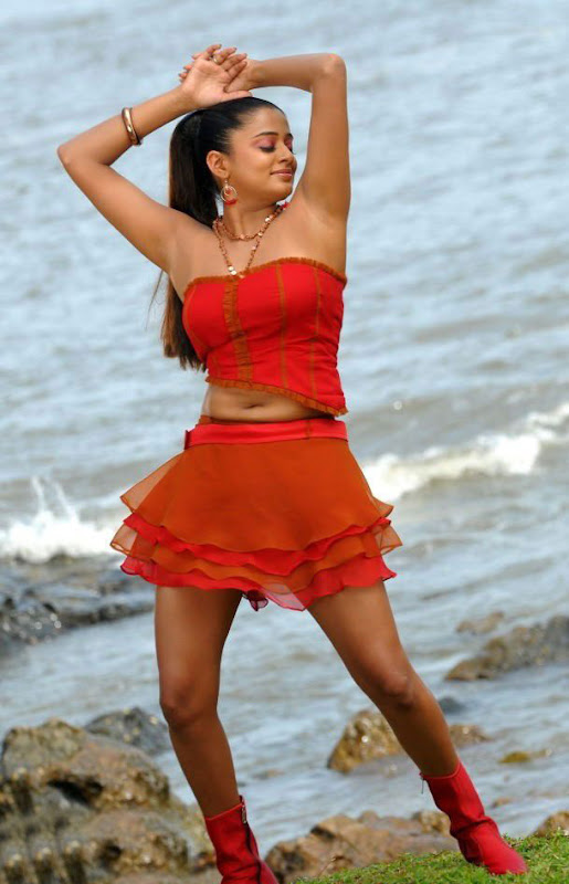 Actress Priyamani Hot Photos From Raaj Telugu Movie Stills cleavage