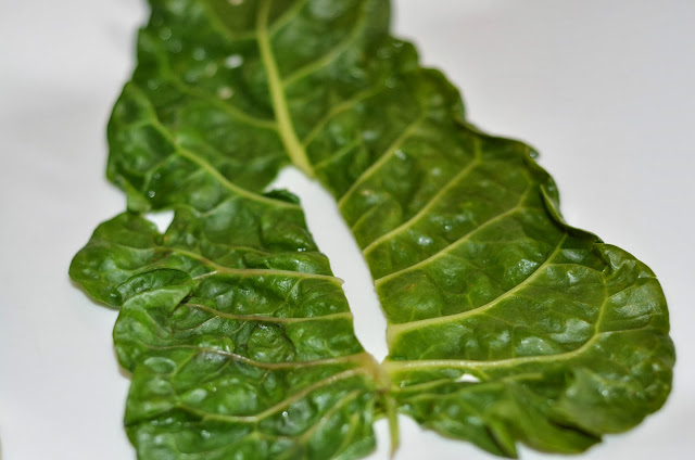 Silverbeet leaves