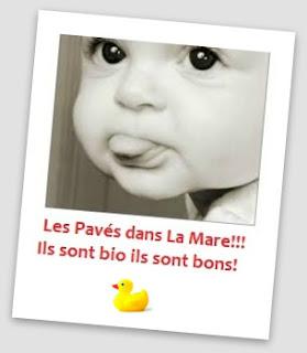 http://www.lamareaucanard.com/p/les-paves-dans-la-mare.html
