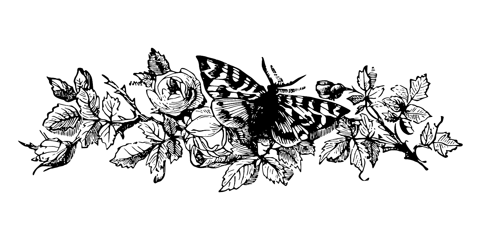 Black and white flower designs free vector download