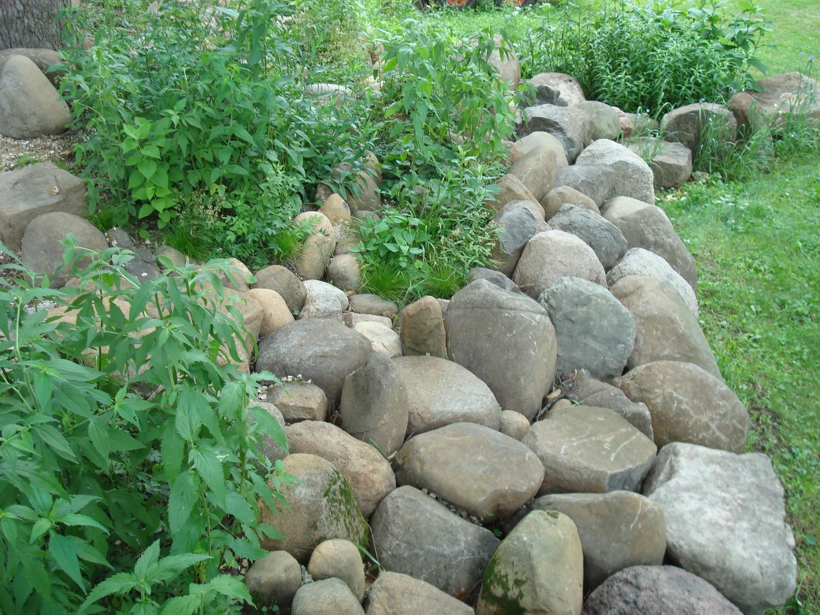 Rock Garden Maintenance Improved Ecosystems