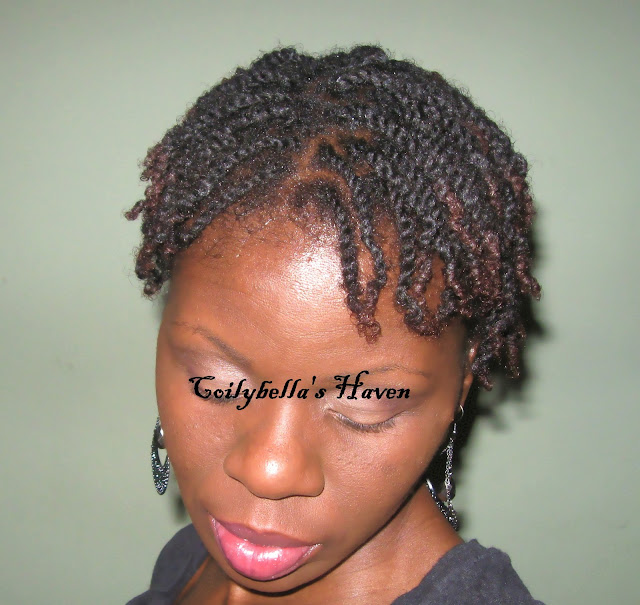 My Hair this week small two strand twists Coilybella