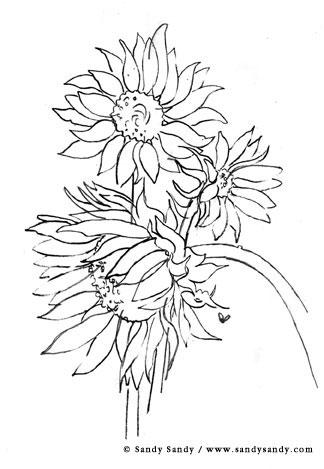 Flowers Drawings