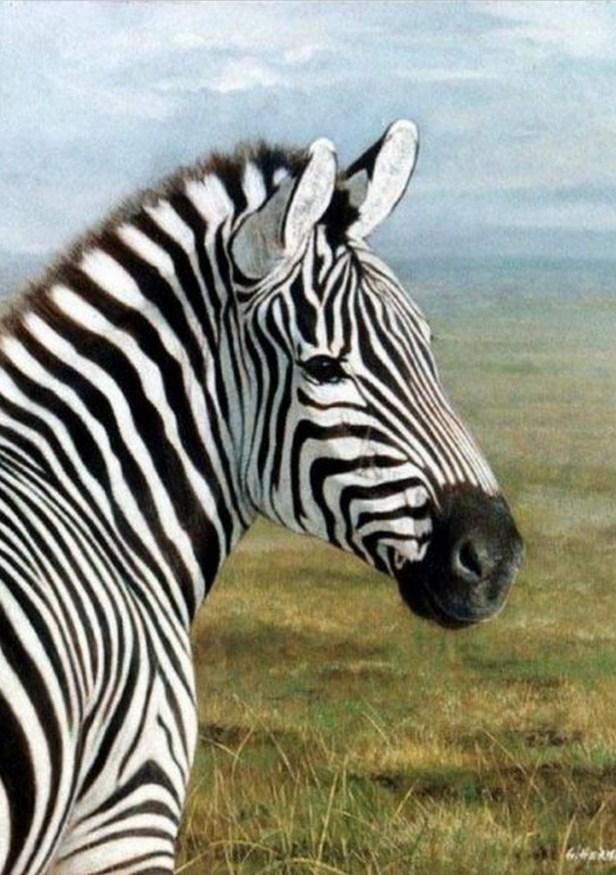 Cuadros pinturas oleos pintura de cebra en paisaje - Cuadros de cebras ...