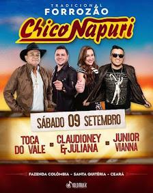 FORROZÃO CHICO NAPURI
