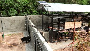 Hilda entering the small enclosure