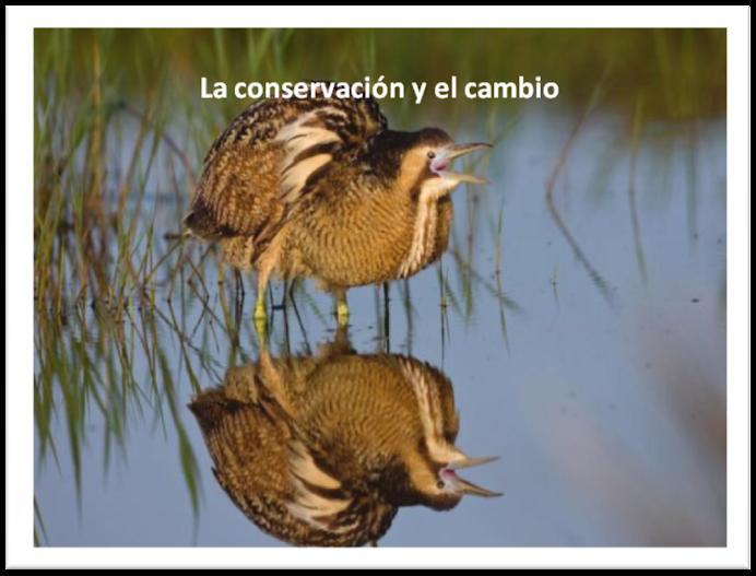 La conservación y el cambio