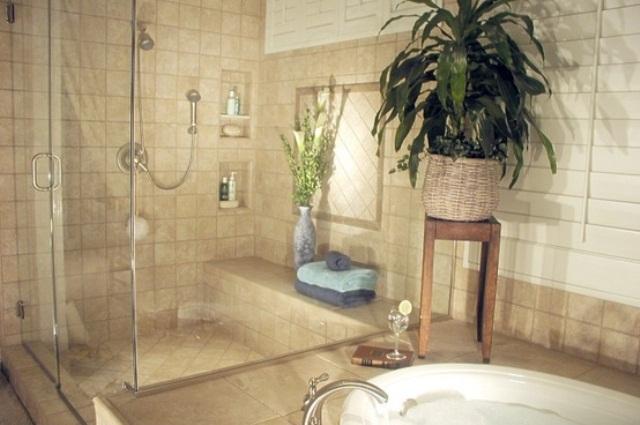 INTRERIOR DESIGN HOME AMERICAN Bathroom Design Ideas With