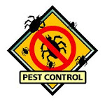 SAY NO TO PEST!!