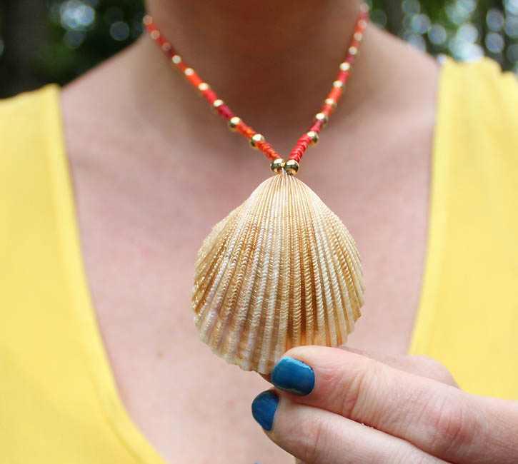 Diy seashell necklace gina michele for What are shells made of