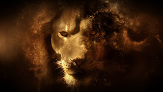 Lion Vector Art HD Wallpaper