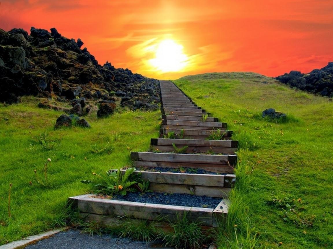 Mientras te encuentras yendo a tu destino, disfruta también tu camino.