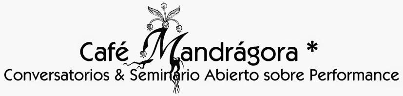 Café Mandrágora * Conversatorios & Seminario Abierto sobre Performance