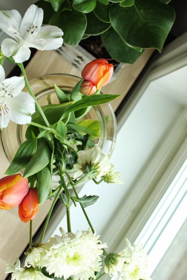 blommor, fönster