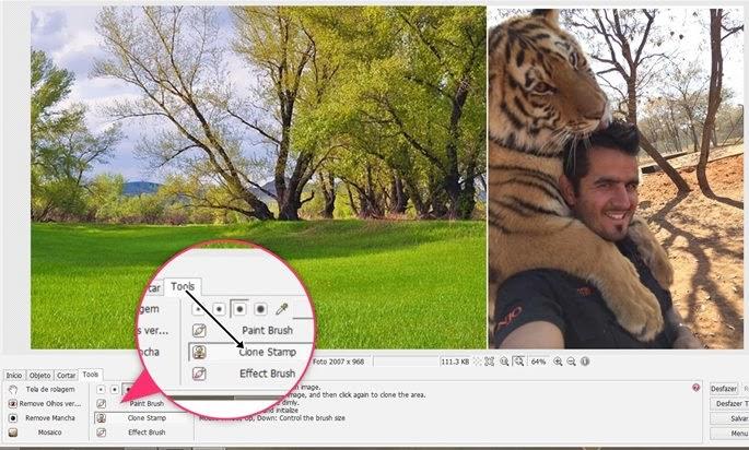 ferramenta clone stamp photoscape