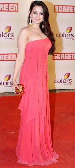 ameesha patel dress