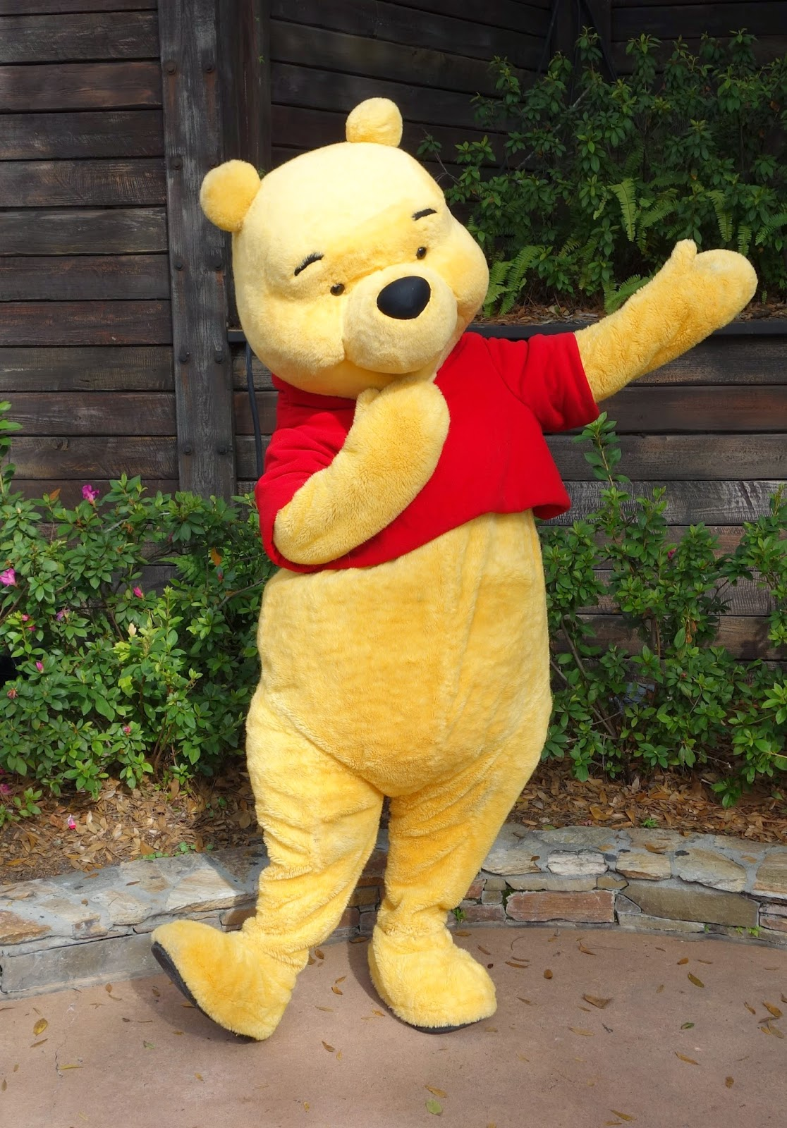 It is a picture of Remarkable Pics of Winny the Pooh