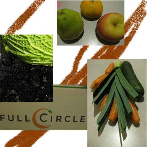 picked up our full circle farm box today all those fruits and