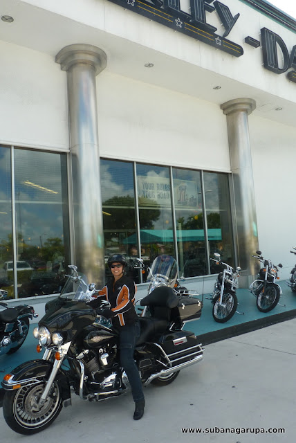 Harley Davidson Bom Kit Bumper Frt  D