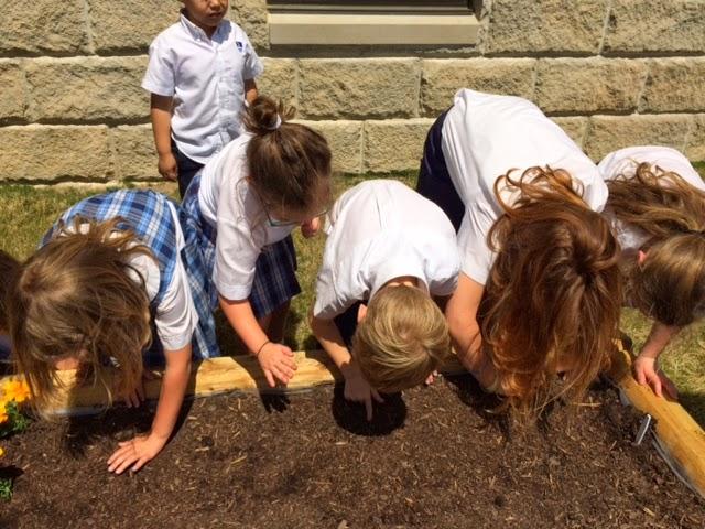 Montgomery Catholic First Grade Students Build Campus Garden 2