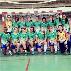 USA y TUN (Femenino) de gira por Brasil | Mundo Handball