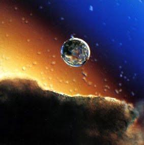El viaje hacia la tierra uterina