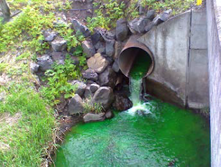 Pullman stormwater outfall dye test