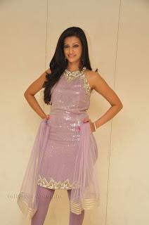 Hasha Nandini pos at cmr aashadam event 028.jpg