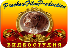 Студия ProShowFilm Production
