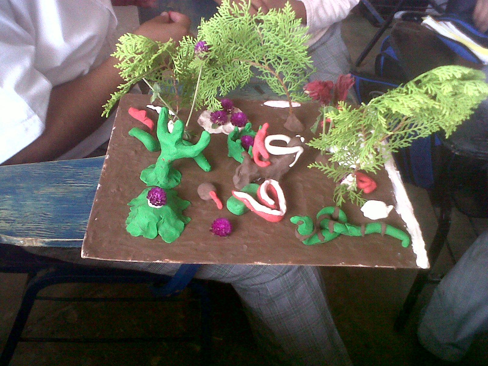 Maquetas De Ecosistema