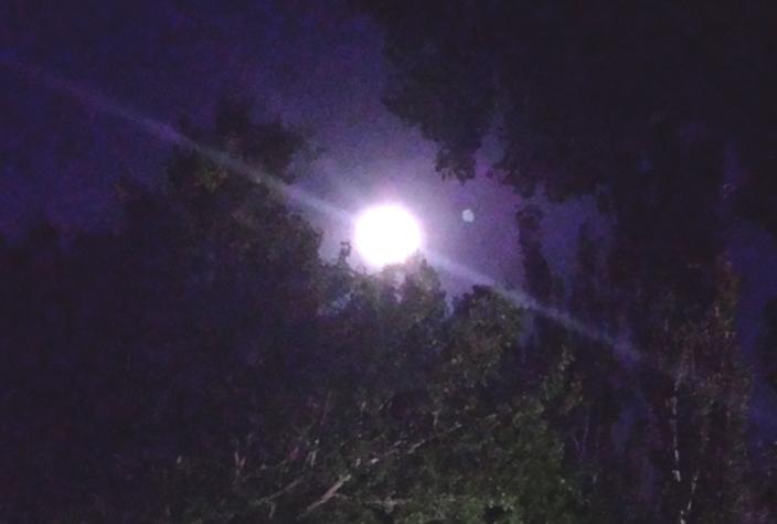 Así se ve la superluna desde mi terraza
