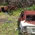 'Cemitério' de carros é descoberto pela polícia em São José de Mipibu/RN