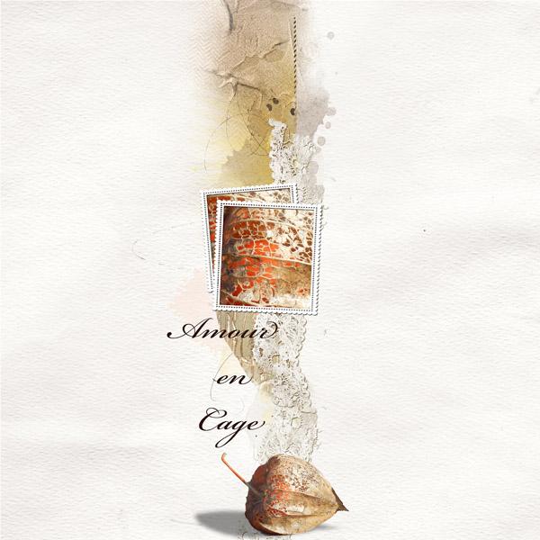 Amour en cage, clin d'oeil Design