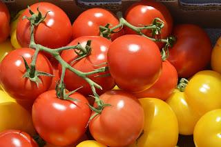 Buah Tomat