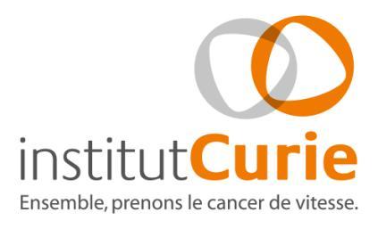Offres emploi Ingénieur brevet  ParisJob