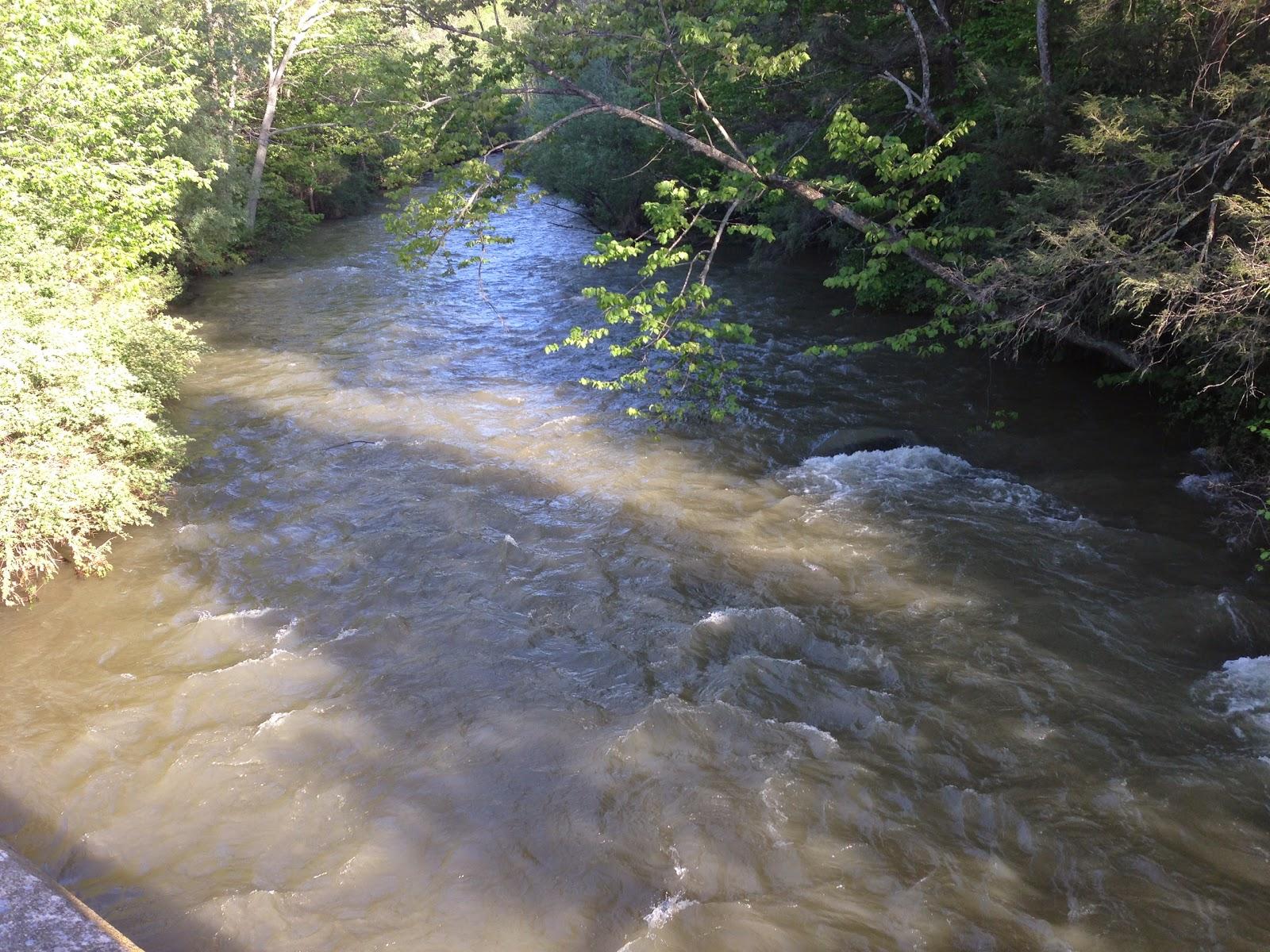 Brookies and bronzebacks fishing creek and white deer for Fishing creek pa