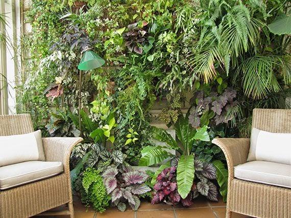 Garden sopelana mundo verde jardinarium plantas de for Decoracion de interiores jardines de invierno