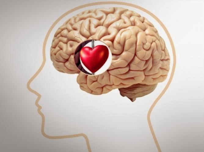 El estado cardiovascular y cognitivo a los 18 años y el riesgo de demencia de inicio temprano