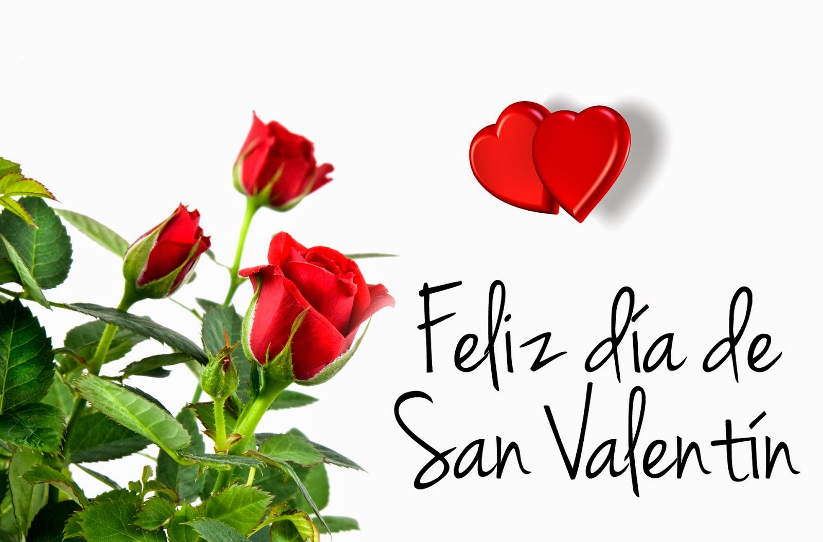 Frases De San Valentín: Feliz Día De San Valentín