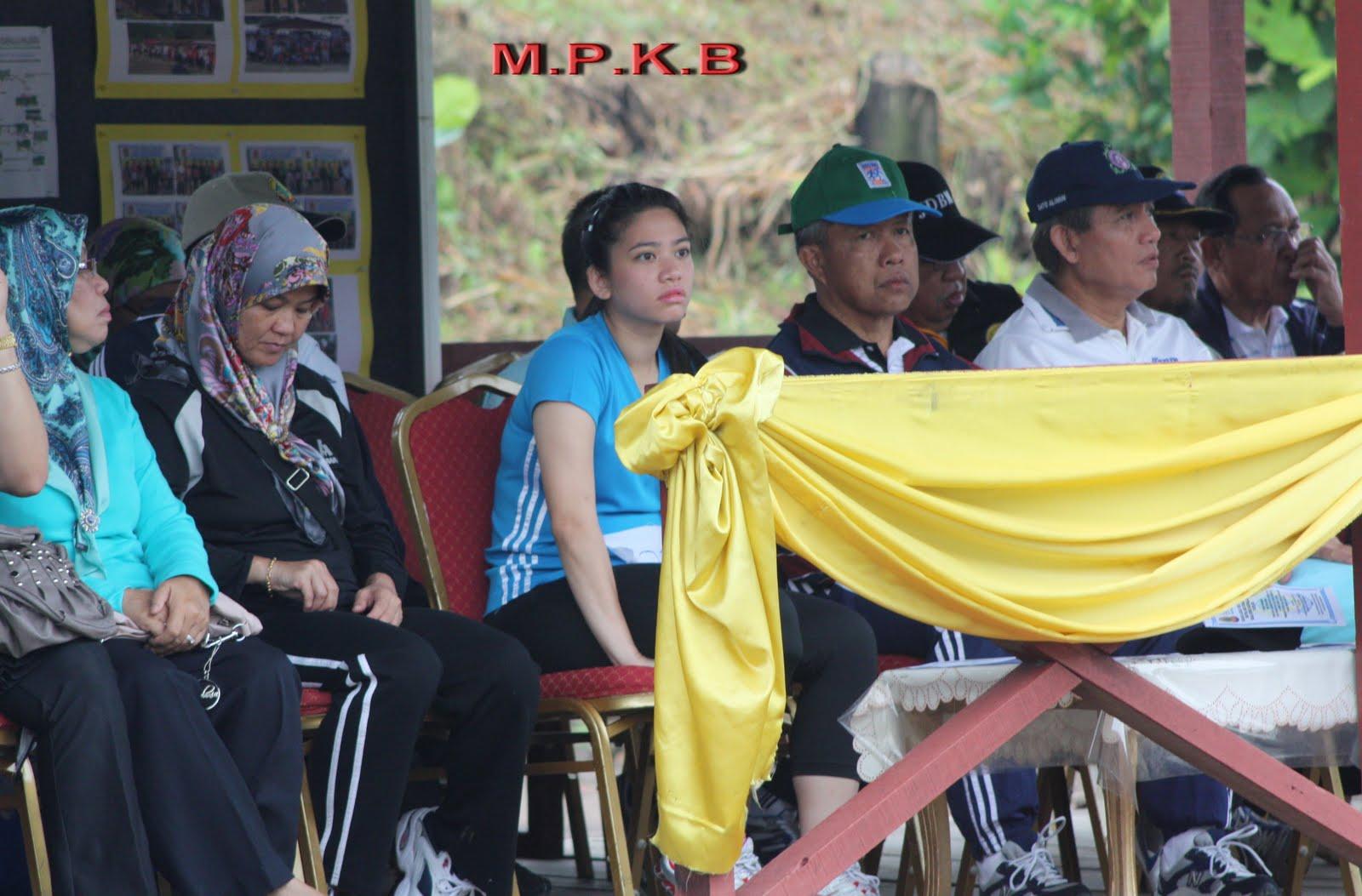 AKTIVITI MAJLIS PERUNDINGAN KAMPONG BELIMBING BAGI TAHUN 2008 hingga