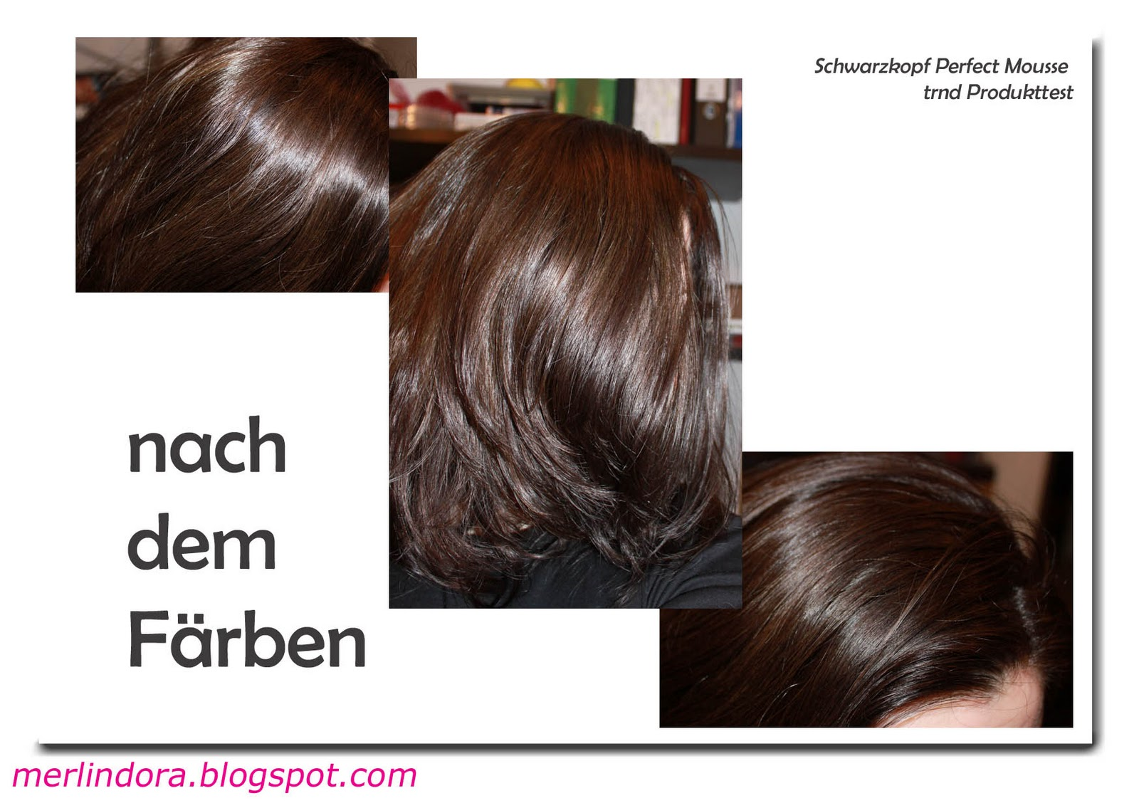 merlindoras blog trnd projekt schwarzkopf perfect mousse