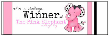 Winner at The Pink Elephant #215
